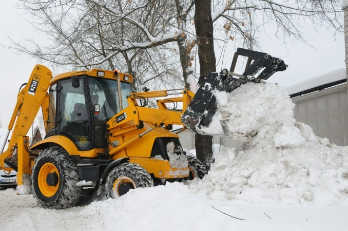 raciokas su sniegu