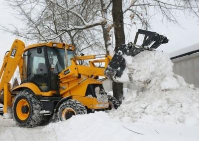 raciokas-su-sniegu
